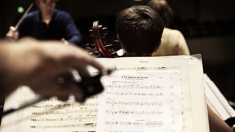 Orkester. Foto: Karin Nilsosn SvD/TT.