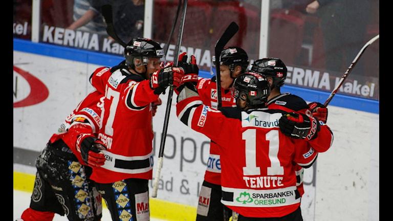 Malmö Redhawks spelare firar kvalseriemål mot Djurgården 2014. Foto: Stig-Åke Jönsson/TT