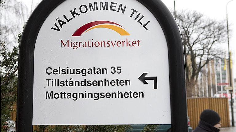 Migrationsverket i Malmö. Foto: Drago Prvulovic/TT