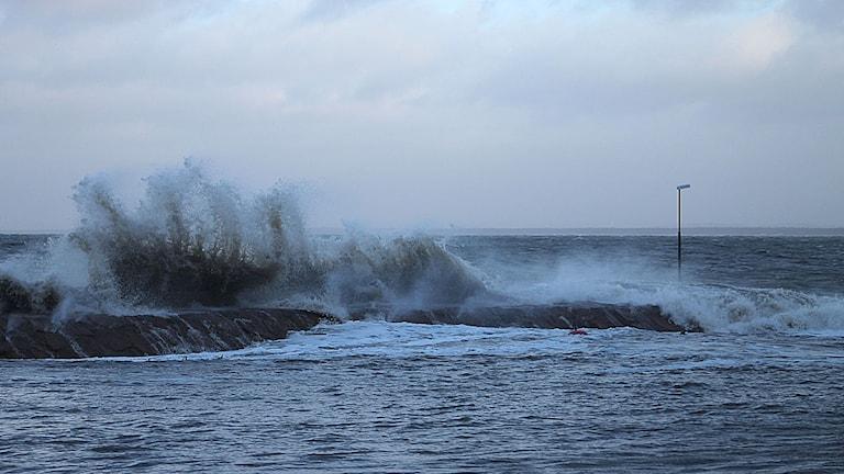 Stormigt i Båstad. Foto: Roger Bengtsson/Sveriges Radio