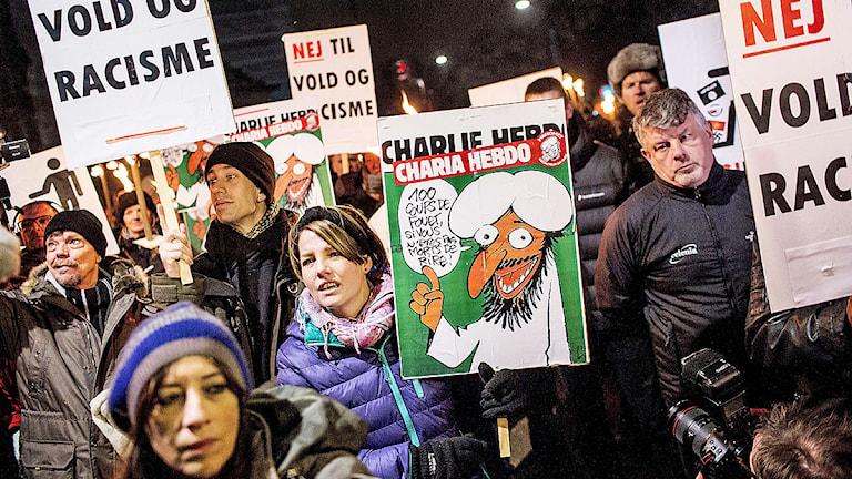 Islamkritiska organisationen Pegida genomförde demonstrationer i Danmark. Foto: Sophia Juliane Lydolph/TT