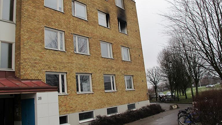 Lägenhet på Åragatan i Helsingborg härjades av brand och fyra barn hoppade ut. Foto: Anna Hanspers/Sveriges Radio