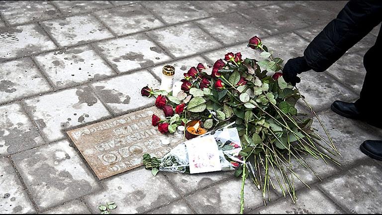 Mordplatsen på Sveavägen i Stockholm 25 år efter mordet på Olof Palme. Foto: Victor Lundberg/TT