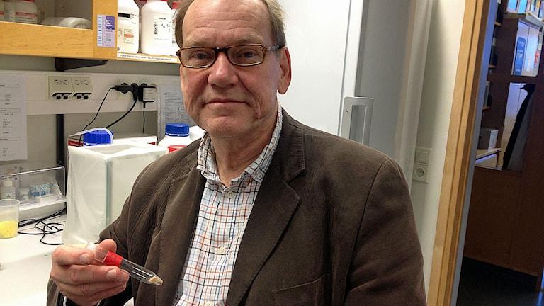 Bo Åkerström har forskat på proteinet A1M som tycks städa blodådrorna från det som orsakar åderförkalkning. Foto: Julia Fryklund/Sveriges Radio
