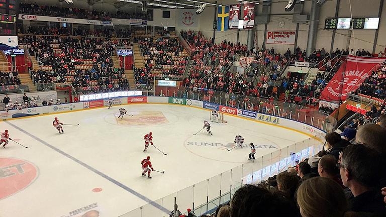 Timrå IK besegrar Malmö inför storpublik. Foto: Joel Hammarström/Sveriges Radio