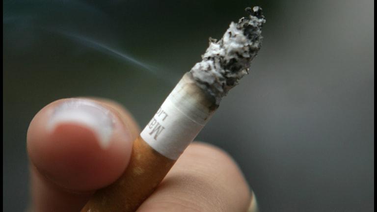 Ung kvinna röker cigarett. Foto: Fredrik Sandberg/TT
