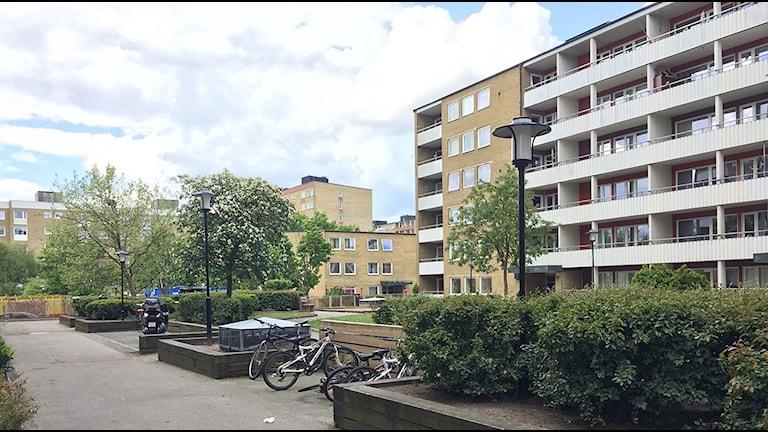 Herrgården i Rosengård. Foto: Rafaela Stalbalk/Sveriges Radio