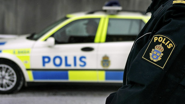 En polisman i uniform med ett polismärke på ärmen står framför en polisbil. Foto: Jessica Gow/TT