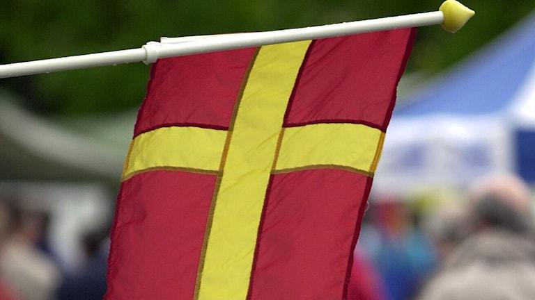 En skånsk flagga i gult och rött. Foto: Roger Wikström/TT
