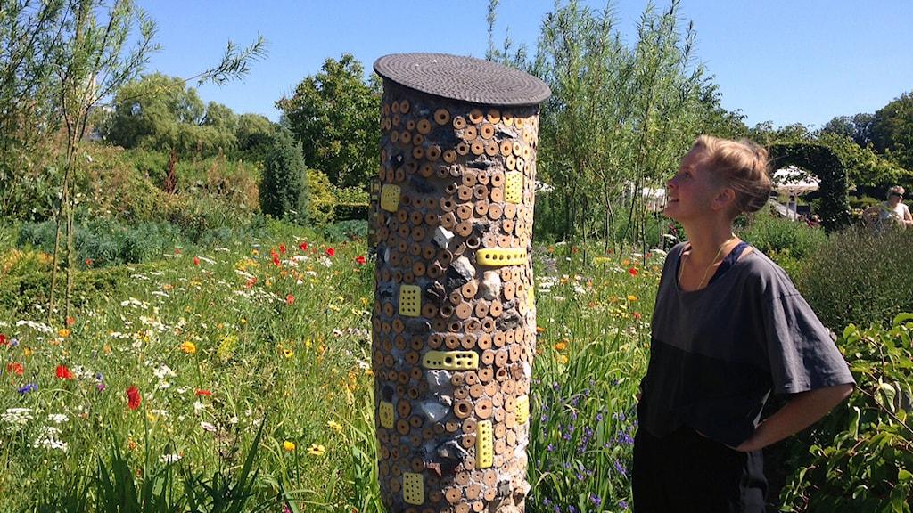 Karin Auran Frankenstein har byggt en insektsträdgård