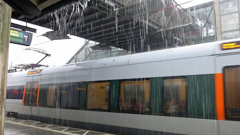 Hällregn över Öresundståg på stationen i Lund. Foto: Karin Olsson-Bendix/Sveriges Radio