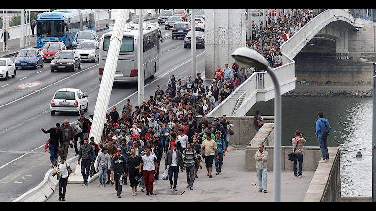 Flyktingar i Budapest. Foto: Zsolt Szigetvary/TT