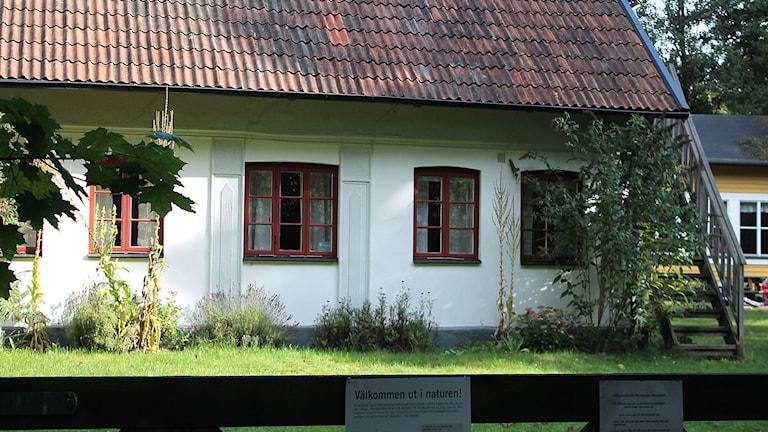 Marietorps naturskola. Foto: Malin Thelin/Sveriges Radio