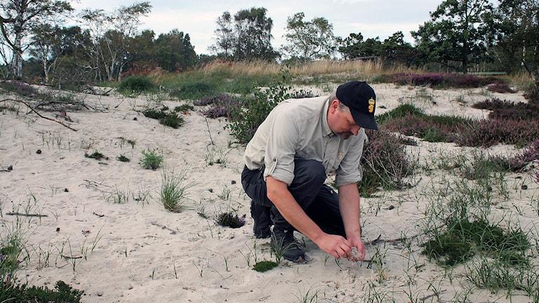 Magnus Jönsson, naturvårdsförvaltare