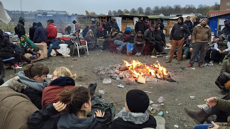 Migrantlägret på Sorgenfri i Malmö. Foto: Anton Kalm/Sveriges Radio