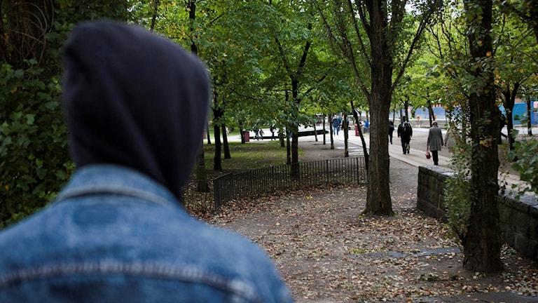 Anonym missbrukare i park. Foto: Robin Haldert/TT