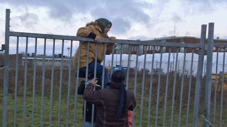 Strömmen av asylsökande till Malmö fortsätter. Vid Migrationsverkets lokaler klättrar folk över staket för att kunna resa vidare till Norge, Finland eller tillbaka till Tyskland. Foto: Julia Wiraeus/TT