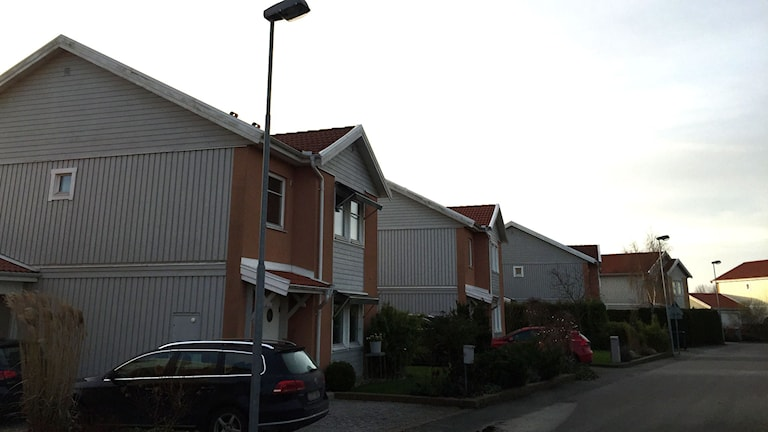 Villorna i Svedala. Foto: Sveriges Radio
