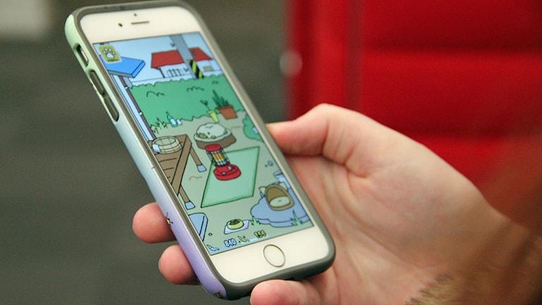 Ett spel i mobilen där man ska ta hand om katter är inne just nu. Foto: Jenny Cederbom/Sveriges Radio