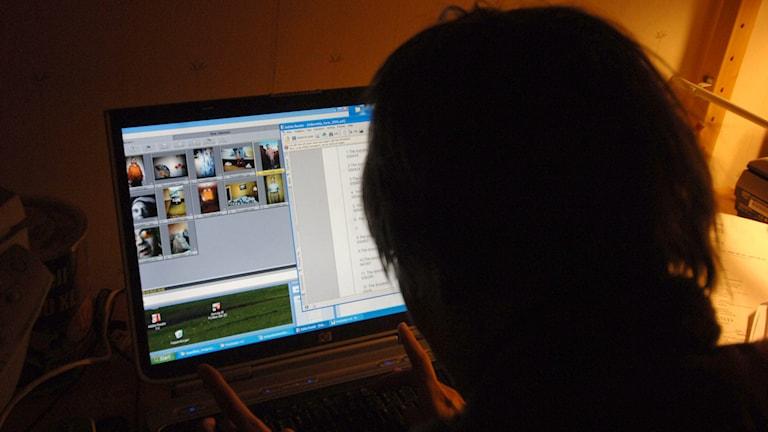 Ung kvinna surfar på dator. Foto: Hasse Holmberg/TT