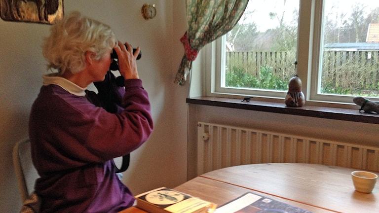 Lone Kalmelid spanar med kikare från sitt kök