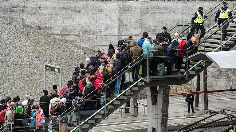 Asylsökande. Foto-Johan-Nilsson/TT
