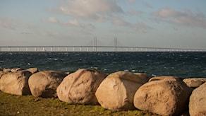 Öresundsbron sedd från Ön Foto: Karin Olsson-Bendix/Sveriges Radio
