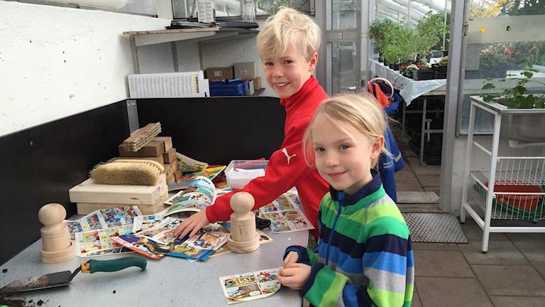 Syskonen Anton och Emma Karrman. Foto: Anton Kalm/Sveriges Radio