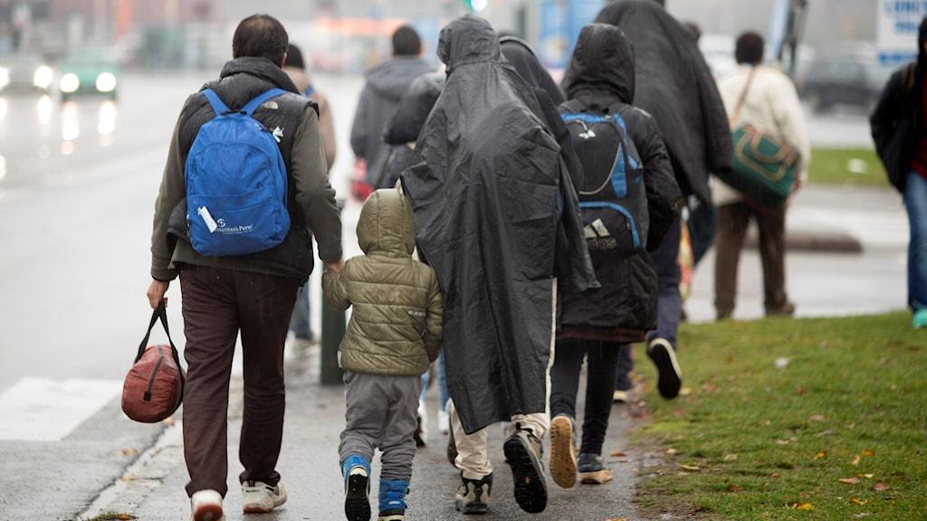 Nyanlända asylsökande i Malmö. Foto: Drago Prvulovic/TT