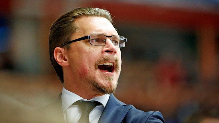 Malmös tränare Björn Hellkvist under en match mellan Linköping och Malmö Redhawks. Foto: Stefan Jerrevång/TT