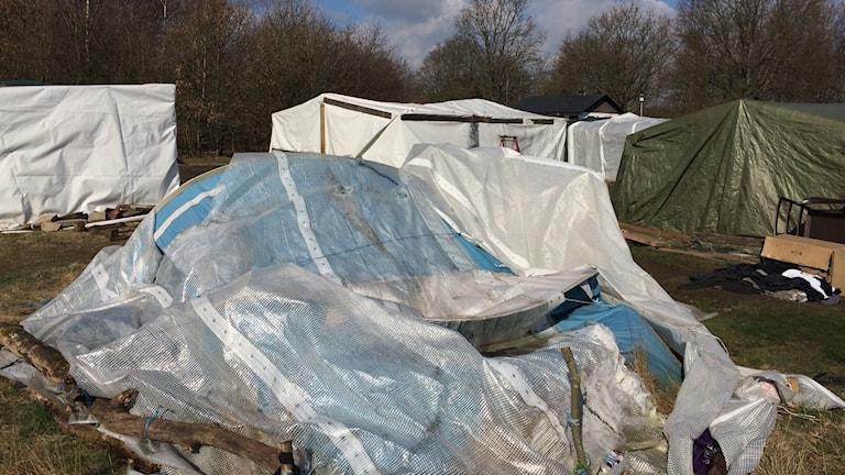 Sedan förra våren har Stenbrogårdens camping i Helsingborg fungerat som en tillfällig boendelösning för EU-migranter.