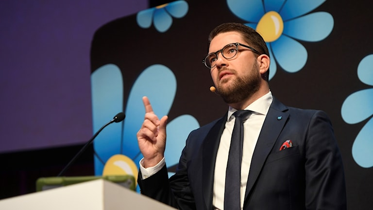 Sverigedemokraternas partiledare Jimmie Åkesson. Foto: Vilhelm Stokstad/TT.
