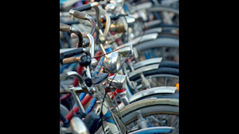 Parkerade cyklar. Foto:  Fredrik Sandberg/SCANPIX