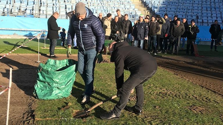 Två män gräver upp bitar av gräsmattan.