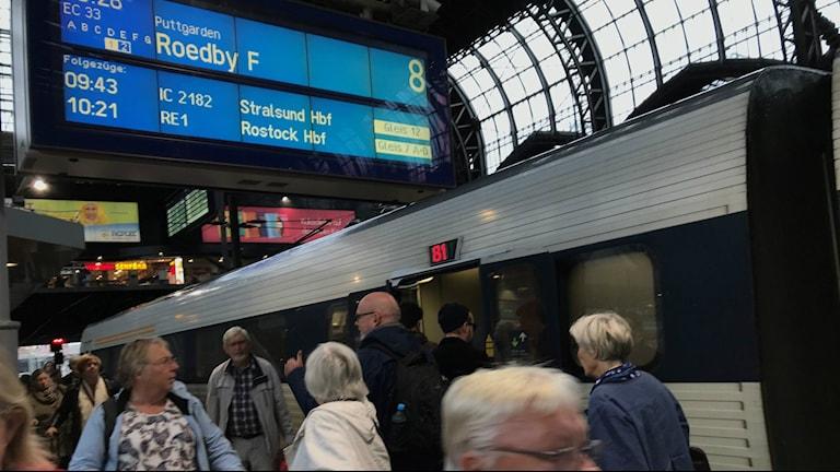 Bilden visar ett tåg som står inne på Hamburgs station. På skylten på perrongen står att tåget ska gå till färjeläget i Rödby. Foto: Anna Bubenko/Sveriges Radio