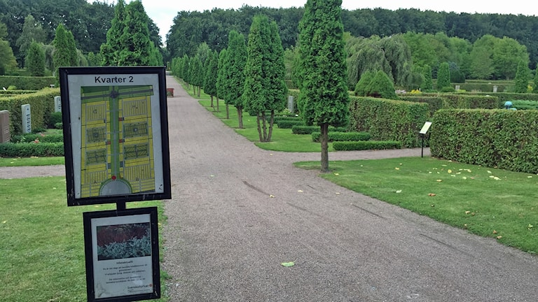 Östra kyrkogården i Malmö. Foto: Elinor Strand/Sveriges Radio.