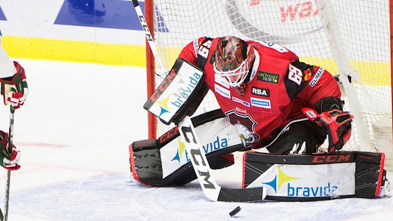 Malmös målvakt Oscar Alsenfelt under tisdagens ishockeymatch i SHL mellan Malmö Redhawks och Frölunda HC på Malmö Arena. Foto: Emil Langvad/TT