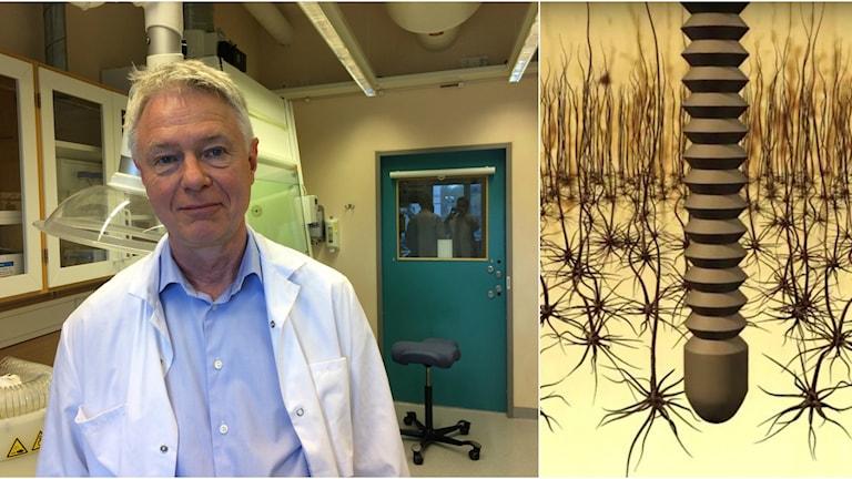Jens Schouenborg, professor i fysiologi