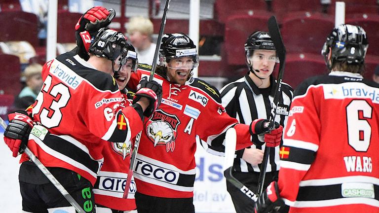 Malmö Redhawks jublar efter ett mål. Foto: Emil Langvad/TT