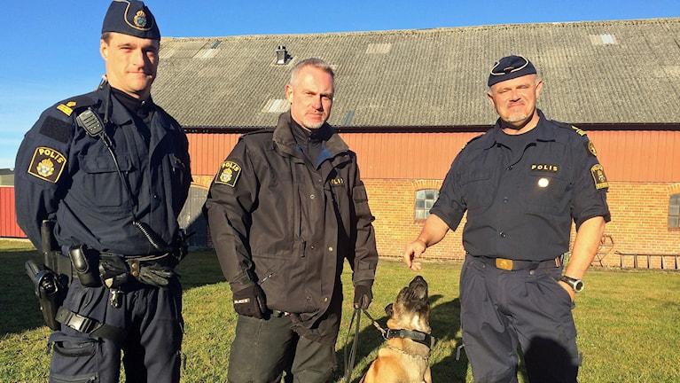 Från vänster Magnus Holmqvist, Peter Holmberg och Glenn Andersson. Foto: Evelina Olsson/Sveriges Radio