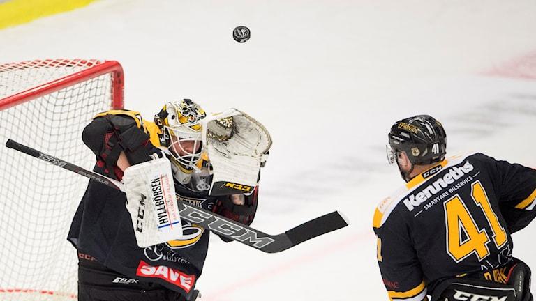 IK Pantern i match mot Björklöven i februari 2017. Foto: Björn Lindgren/TT.