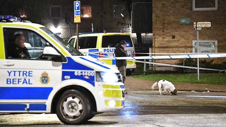 Polisen söker med vapenhund på Docentgatan/Eriksfältsgatan i Malmö efter en misstänkt skottlossning på fredagskvällen.