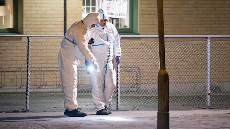Polisens tekniker undersöker på torsdagsmorgonen ett område vid Nydalaskolan i Malmö där en man hittades  livlös. Mannen fördes till sjukhus med ambulans där han konstaterades avliden. Händelsen rubriceras som mord alternativt dråp. Foto: Johan Nilsson/TT