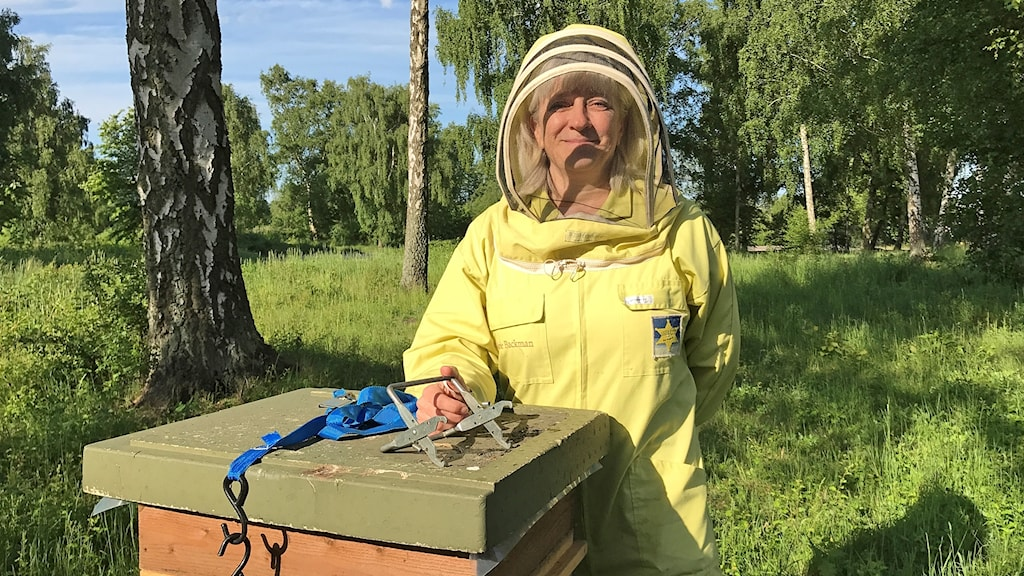 Marie Backman, yrkesbiodlare i Malmö. Foto: Hanna Palm/Sveriges Radio.