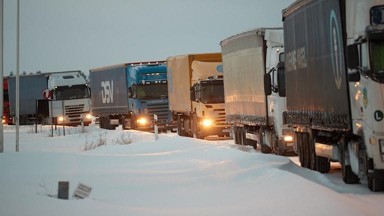 En rad med lastbilar som står stilla på riksväg 19 utanför Degeberga i södra Skåne på onsdagen. Foto: Andreas Hillergren / TT