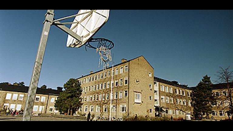 Skolgård, arkivbild Foto: Erik G Svensson/Scanpix