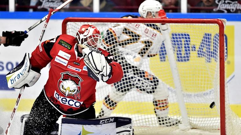 Djurgårdens Jonathan Davidsson har kvitterat till 3-3 mot målvakten Jonas Gunnarssons Malmö. Foto: Björn Lindgren/TT.