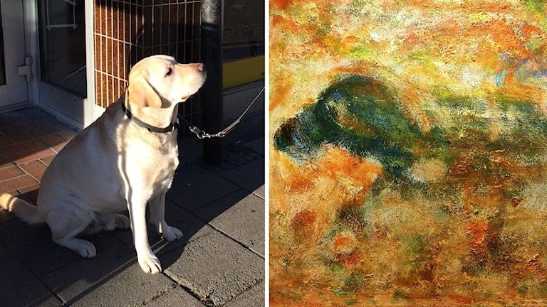 Hunden Roxy med sitt verk.