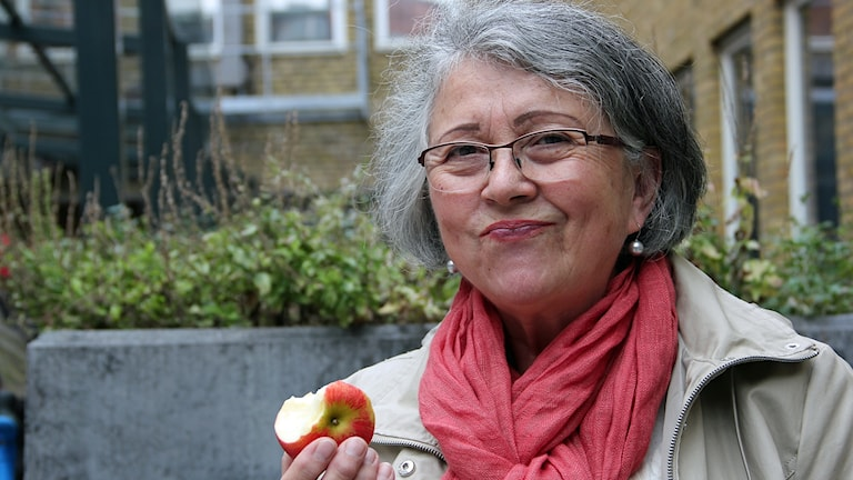 Gloria Nordlund som driver äppelodling utanför Lund mumsar på ett äpple av sorten Discovery. Foto: Hans Zillén/Sveriges Radio.
