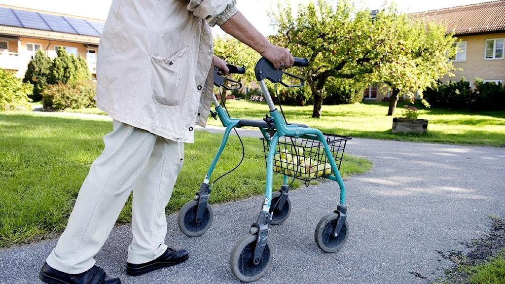Från den 1 maj får hemkommunen betala när äldre och andra som behöver hemtjänst åker på sommarnöje i andra kommuner. Foto: Jessica Gow/Scanpix.